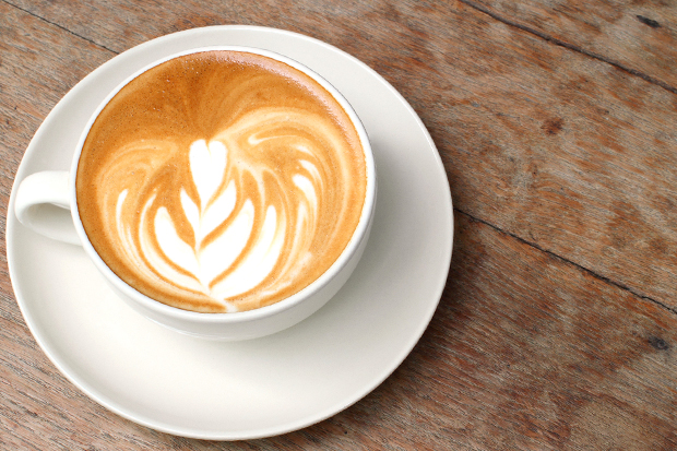 coffee masterclass meld